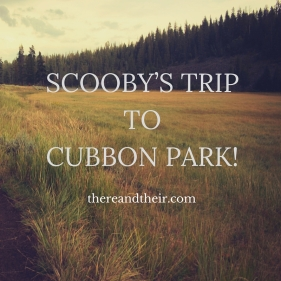 SCOOBY'S TRIP TO CUBBON PARK!.jpg